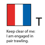 T - Keep clear of me: I am engaged in pair trawling